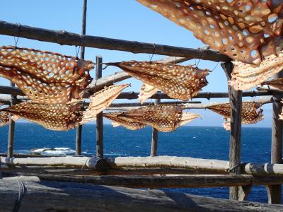 Fish Drying Muxia , Spain